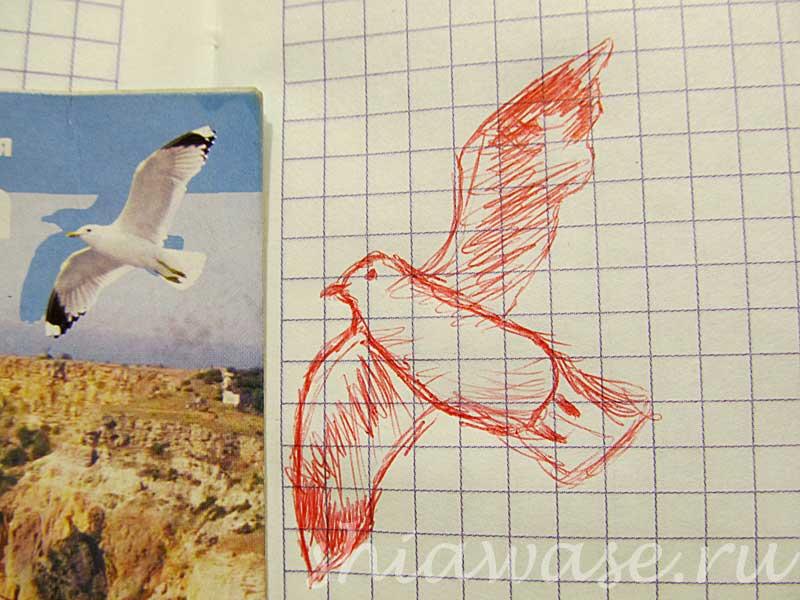 чайка рисунок