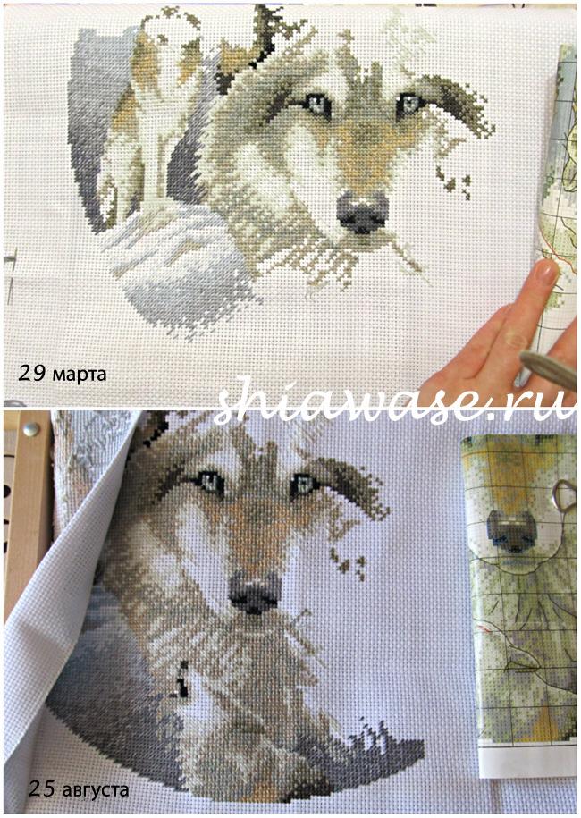 вышивка-волки-процесс