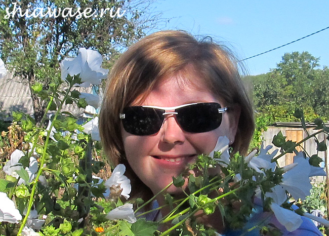 новые-солнечные-очки