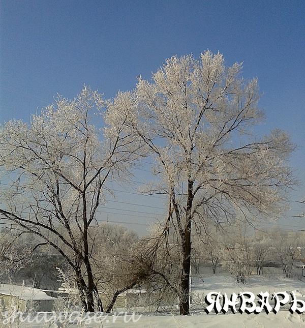 мороз-в-январе