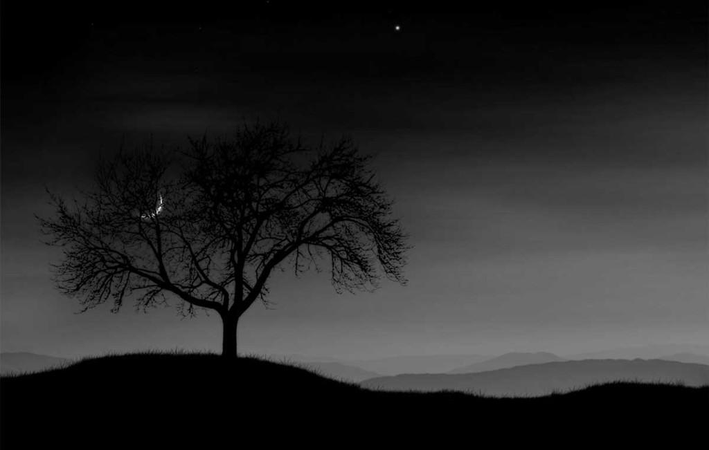 ночная-книга-5